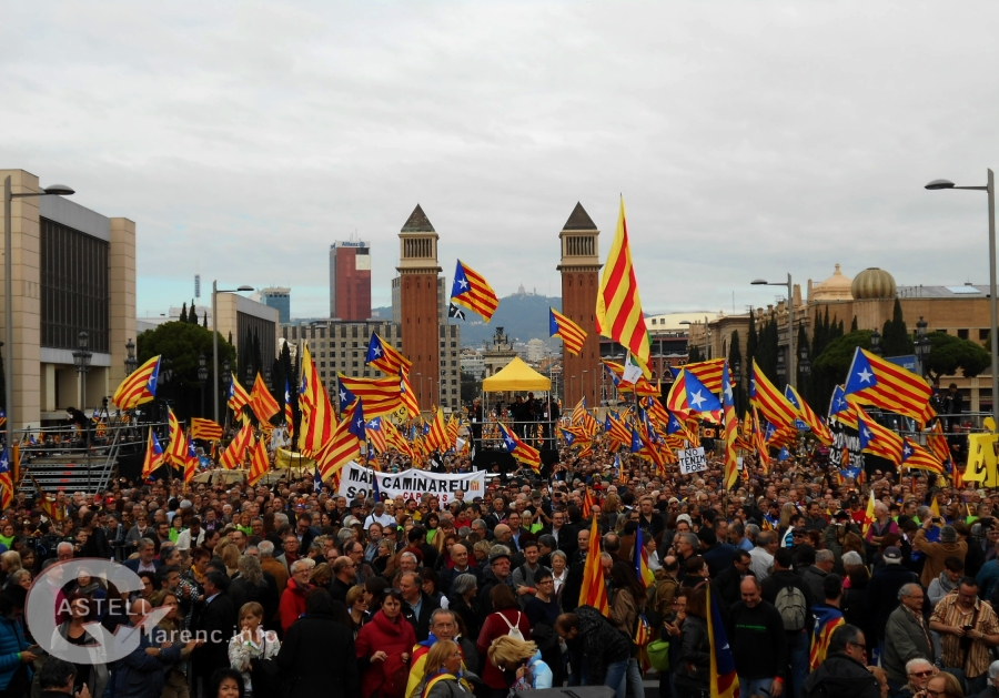 Per la democràcia defensem les nostres intitucions_6.jpg